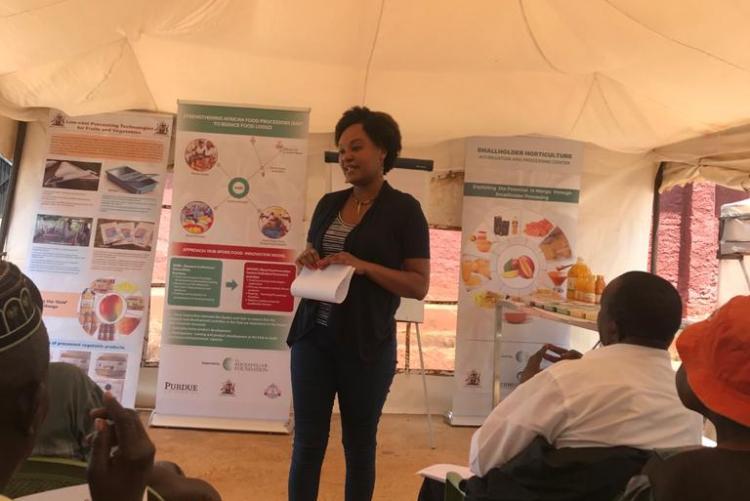 SME capacity building