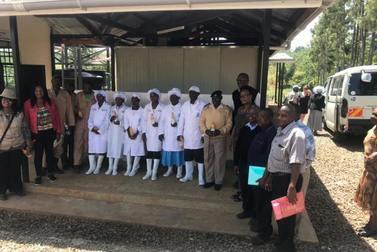 Training of SME in Embu on Mango Processing