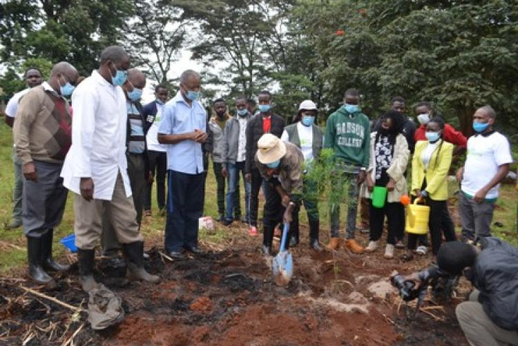The college principal planting a tree